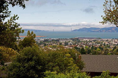 Mid Century Luxury Berkeley Real Estate